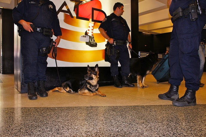Snifferdog op het BART station in san Francisco